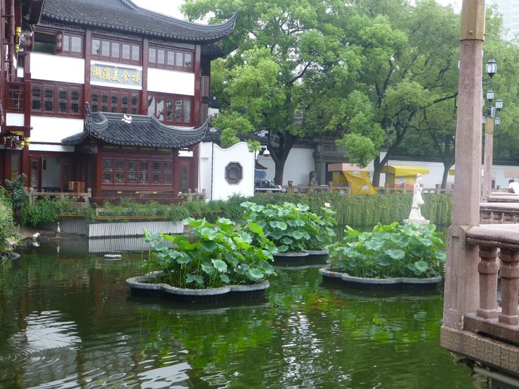 Just outside Yu Yuan, in the old center (南市) of Shanghai.