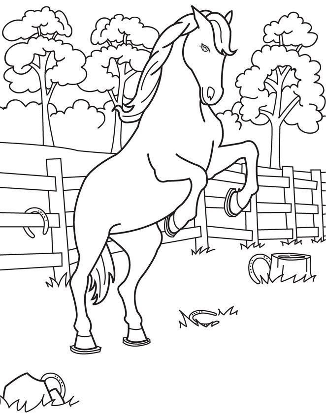 101 besten coloring pages bilder auf pinterest  cowboys