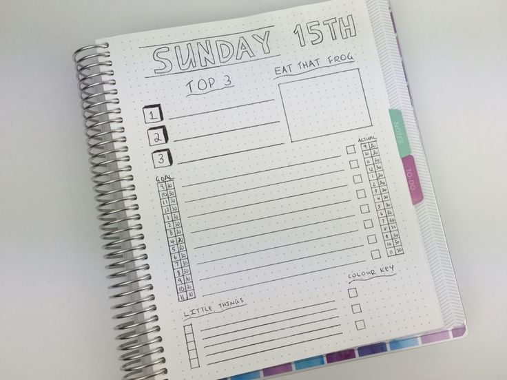 daily planning bullet journal style  using a plum paper