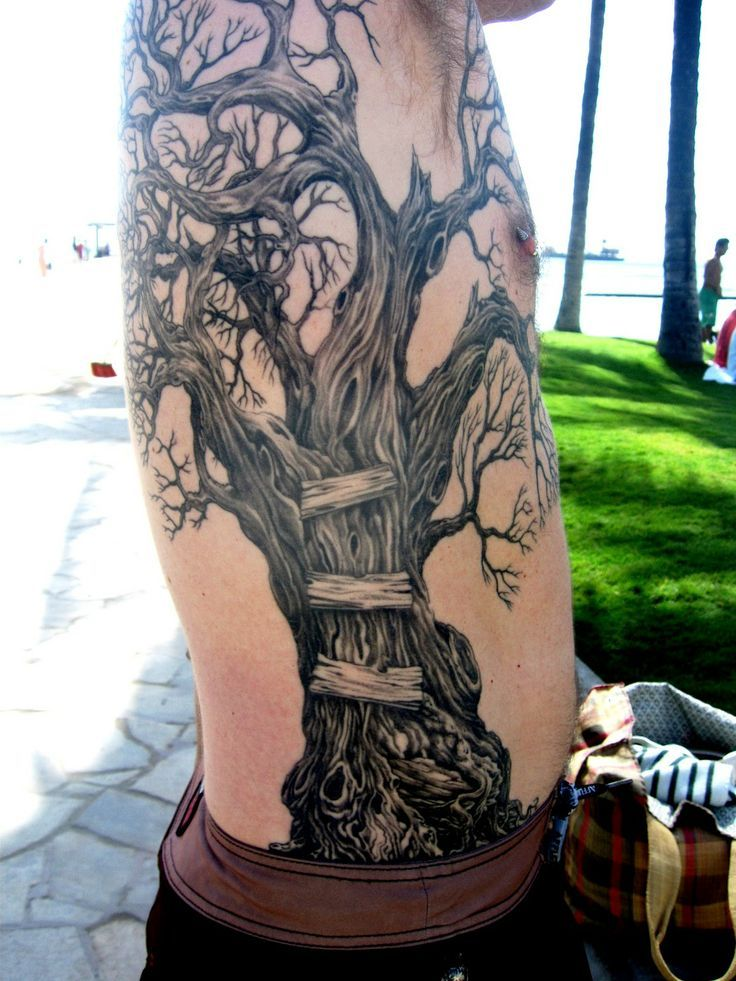Pin by Jess Lobdill on Tattoos I love Tree tattoo men