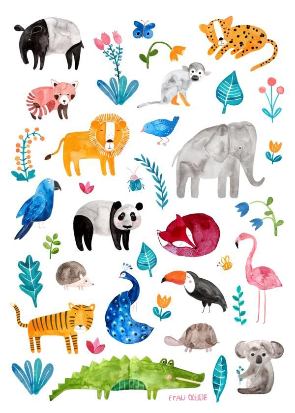 Tierposter von Frau Ottilie fürs Kinderzimmer / für Kinder / für Jungen und Mädchen