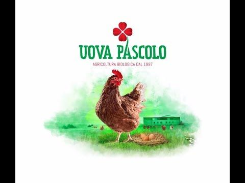 interview for video presentation customer: uova pascolo,