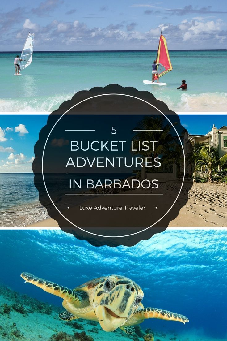 5 Adventures For Your Barbados Bucket List - Luxe Adventure Traveler