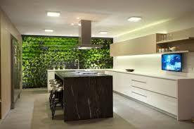 Resultado de imagen para cocinas modernas con plantas