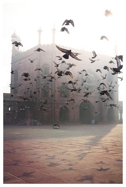 Jama Masjid, New Delhi, India - photo: Etienne Roudaut