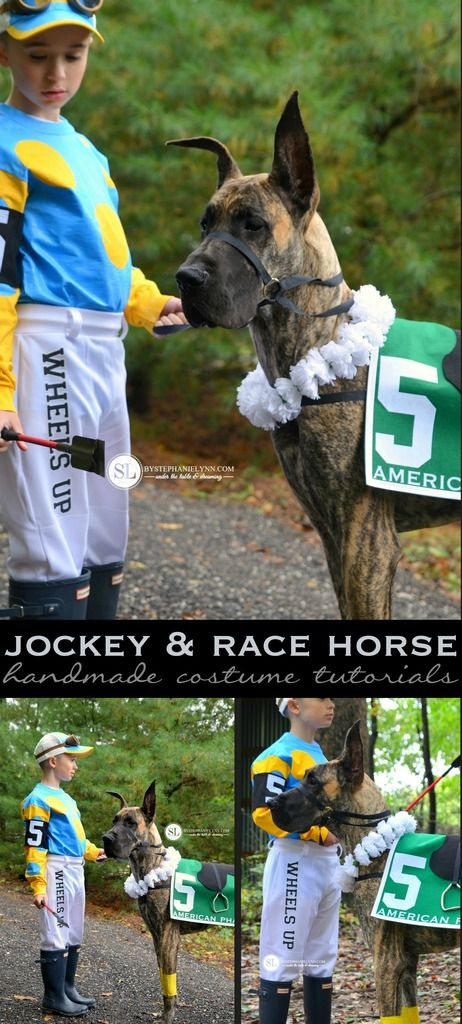 Jockey and Race Horse Costume - Homemade Coordinating Kids & Pet Costume from MichaelsMakers By Stephanie Lynn