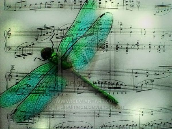 Nature Is Filled With The Spirit Of Music... Music Reflects Nature's Highest  Emotions !  http://about.me/Samissomar