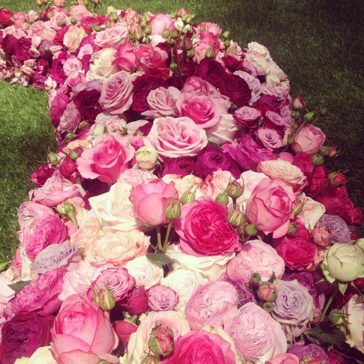Beautiful roses #PiagetRose