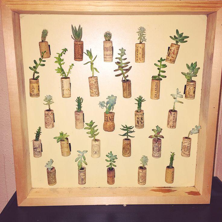 Cuadro con Suculentas y cactus con corchos.