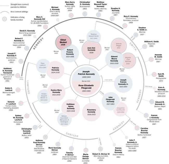 25+ best ideas about Family tree diagram on Pinterest | Age of ...