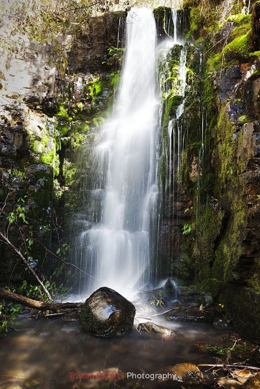 Photo O'Grady Falls, Tasmania. by Tristan Stuart on 500px