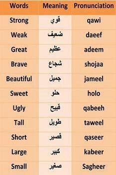 .word meaning pronunciation #learnarabiclanguage