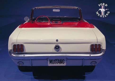 12445 - FORD - MUSTANG 1964 - Conversível branco de traseira - 41x29 cm. -