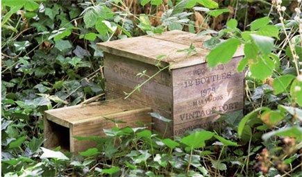How to make a hedgehog house - Going to make one of these with my youngest when he next comes to the allotment