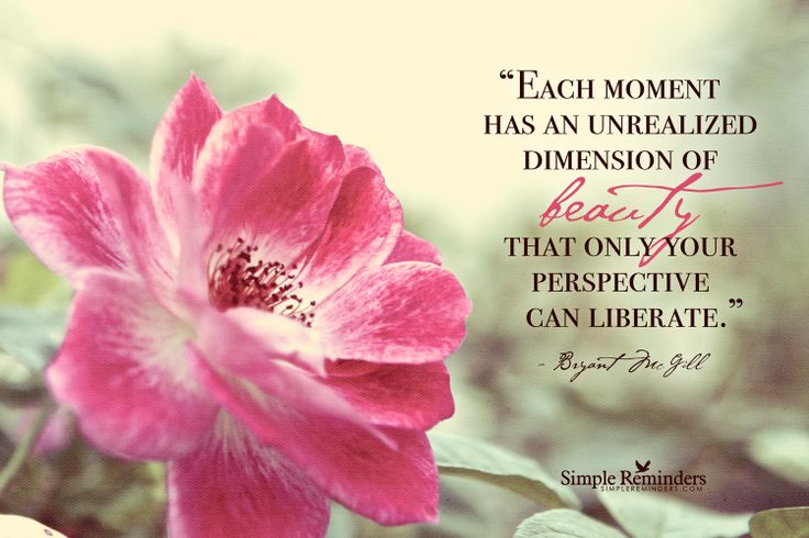 Each moment has an unrealized dimension of beauty that only your perspective can liberate. ~Bryant McGill