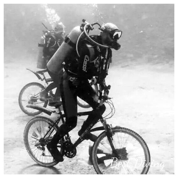 #best diving