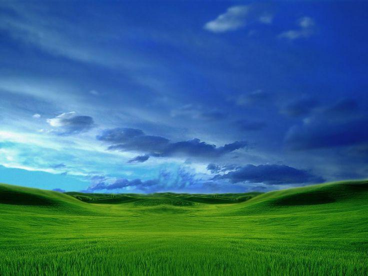 Zöld rét, mező háttérkép