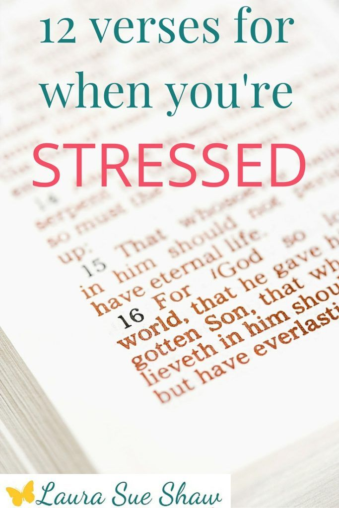 12 Verses for When You Feel Stressed | Peace and Bible verses