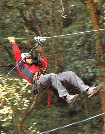 Canopy Tours - Western Cape From   R 450.95