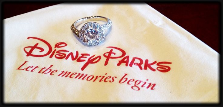 Disney Engagement! Disney Wedding!