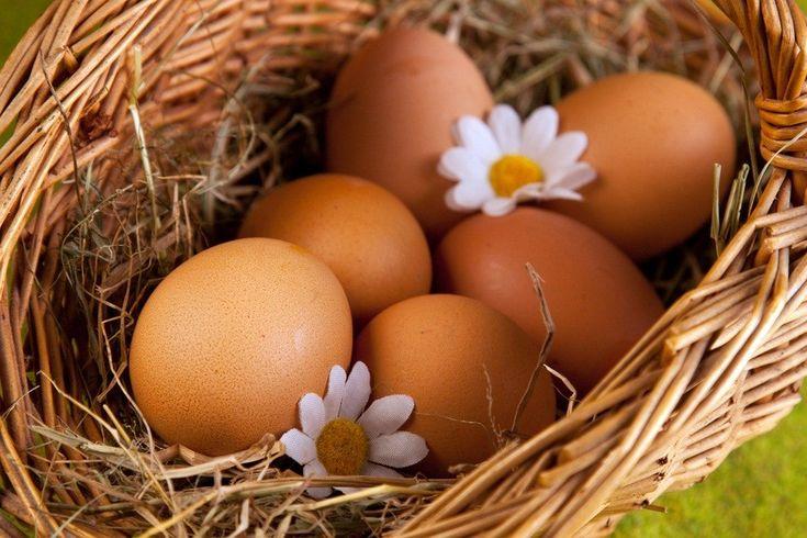 Ученые: Куриные яйца снижают риск развития рака груди http://www.belnovosti.by/diety/54117-uchenye-kurinye-yajtsa-snizhayut-risk-razvitiya-raka-grudi.html