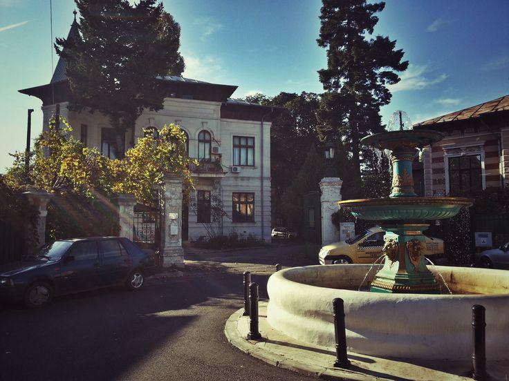 ntrarea Costache Negri (Cotroceni), o oază de linişte Source: Bucuresti Realist. Toate drepturile rezervate