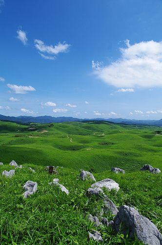 Akiyoshidai Quasi-National Park, Yamaguchi, Japan 山口 秋吉台