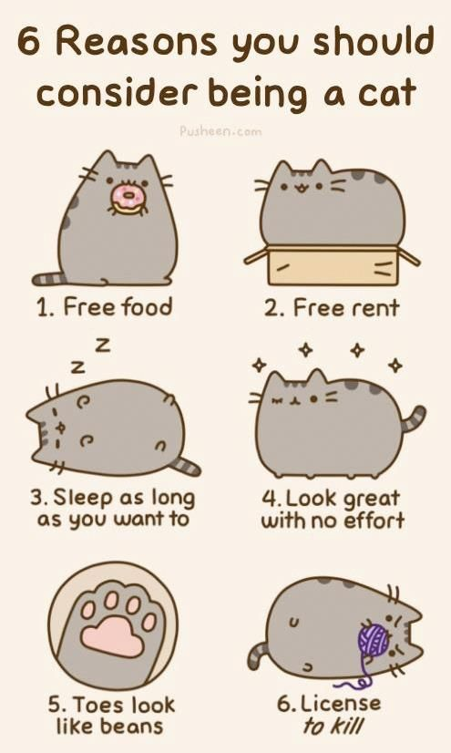 "Pusheen ""6 reasons"" sticker sheet $6.00"