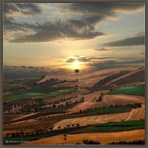 Sunset, tramonto - Nei pressi di Cupello e Vasto in Abruzzo by Giancarlo Giupponi  Trentino, via Flickr