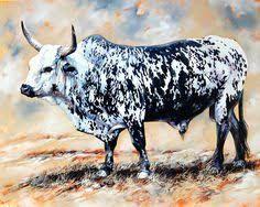 hand drawn nguni cattle - Google Search