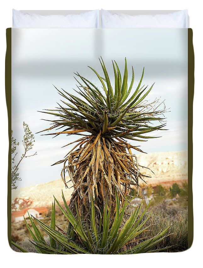 Duvet Cover featuring the photograph Yucca In Winter by Evgeniya Lystsova. Yucca plant in desert near Red Rock Canyon, Nevada, USA. Wonderful choice for your bedroom (Home Decor, Interior Design). Our soft microfiber duvet covers are hand sewn and include a hidden zipper for easy washing and assembly. Your selected image is printed on the top surface with a soft white surface underneath. #DuvetCover #YuccaPlant #HomeDecor #InteriorDesign