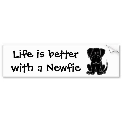 Funny black newfoundland puppy dog art bumper sticker