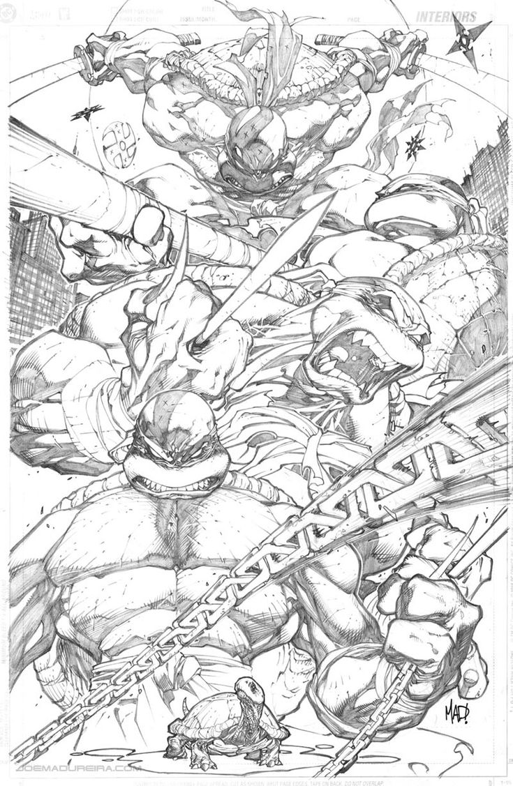 Teenage Mutant Ninja Turtles (Pencil)