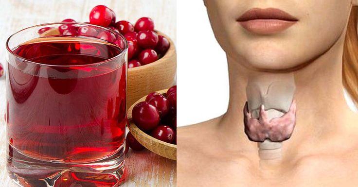 Этот сокнеобходим для полноценной работы щитовидной железы! Когда дело доходит до проблем со щитовидной железой, лучший способ — это начать употреблять правильные питательные вещества, которые необходимы для полноценной работы щитовидной железы. Многие виды деятельности в организме, такие как дыхание, уровень холестерина, жировой и углеводный обмен, развитие мозга, менструальные циклы и температура тела контролируются гормонами щитовидной …