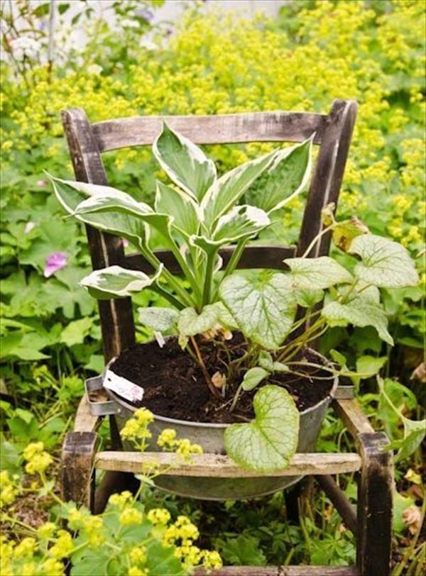 DIY Recycled Chair garden planter