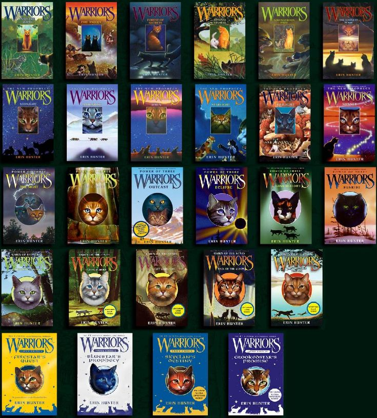 The Warriors series by Erin Hunter.  A 'must-read' if you're a cat lover.  Delightful!