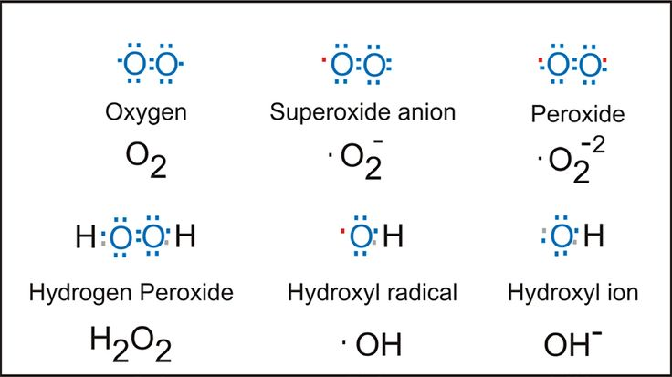 Electron structures of common reactive oxygen species.