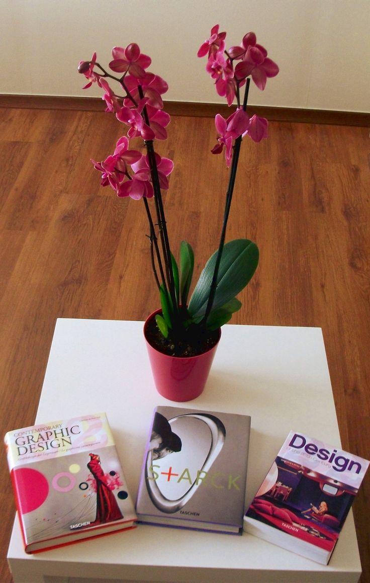 Where interior #design meets its theoretical base. #web #design #ideas