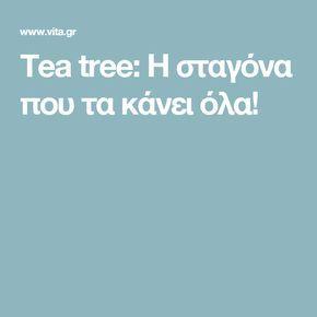 Tea tree: Η σταγόνα που τα κάνει όλα!