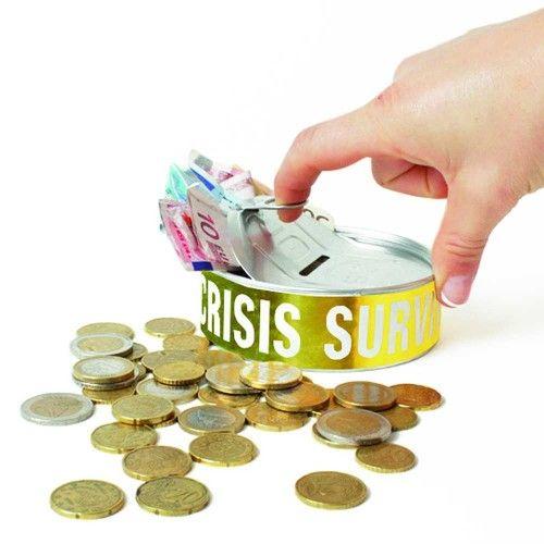 Financial Crisis Survival Kit