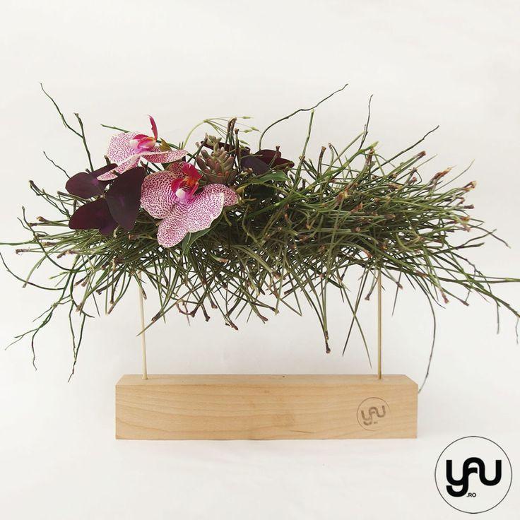 orhidee plante suculente si pin aranjament floral pentru MARTIE _ yau concept _ elenatoader (4)