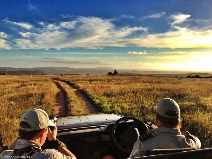 Twelve awesome things to do in South Africa! www.iesabroad.org/capetown #studyabroad #travel #southafrica