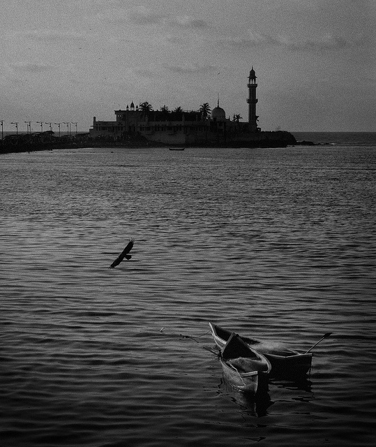 Twin Boats by Arun Shah Masood, via Flickr