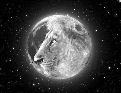 Images About Tattoo Ideas On Pinterest Sagittarius Sun And The Moon