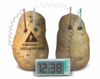 Potato Clock i gruppen Hobby & Fritid / Experiment & Utforskning / Experiment hos Hobbex (809978)