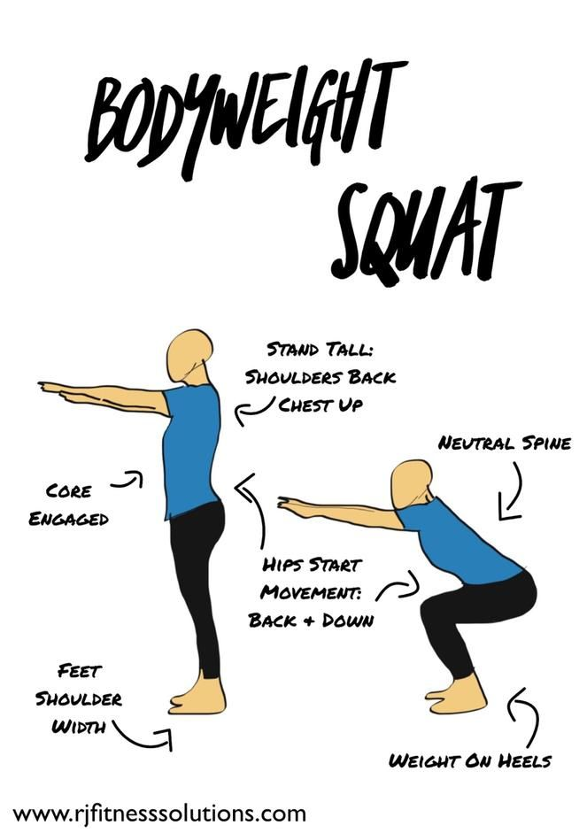 Bodyweight Squat Diagram Workout For Beginners Exercise Squats