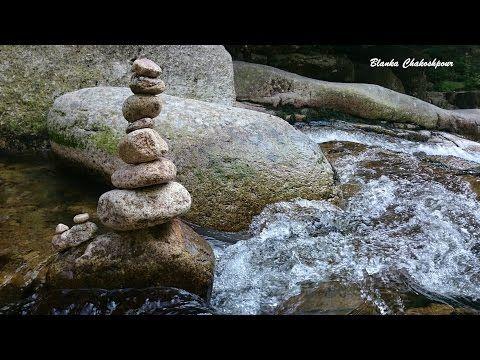 Meditace na přitahování hojnosti s Robertem Reevesem - YouTube