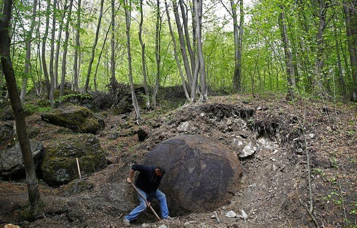 WIKITREE | 숲에서 발견된 '정체불명의 돌'