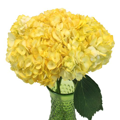35 best Yellow Wedding Flowers images on Pinterest Yellow