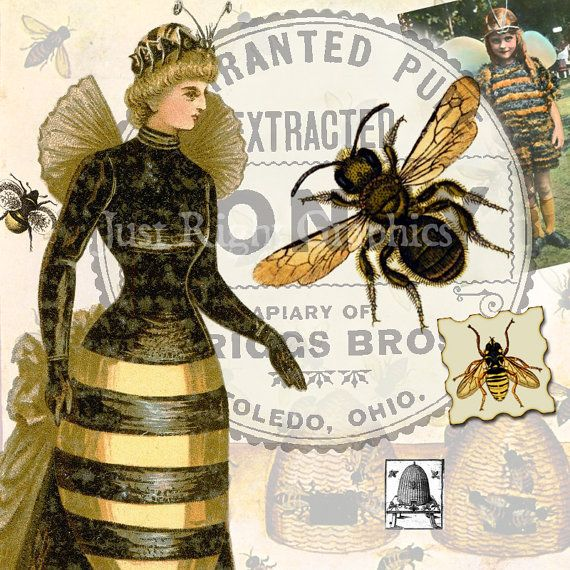 Vintage Bees Clip Art Digital Collage Sheet by JustRightGraphics, $3.50: B B B Bees, Art Journals, Clip Art, Queen Bees, Vintage Bees, Bees Art, Bees Clip, Art Digital, Honey Bees